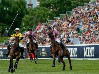 tury-v-angliu-tur-v-london-Polo_in_London.jpg
