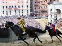 tury-v-italiu-horse-rails.jpg